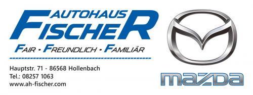 Fischer-Banner-Druck-0618