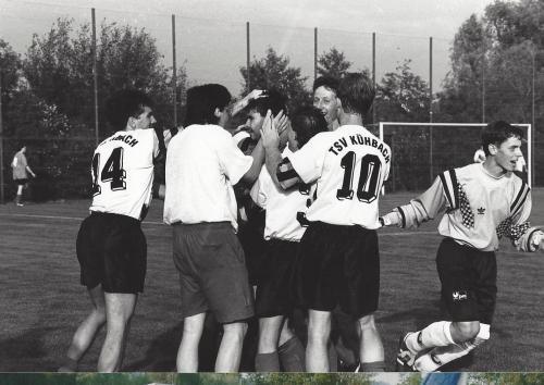 Aufsteiger 1993 1